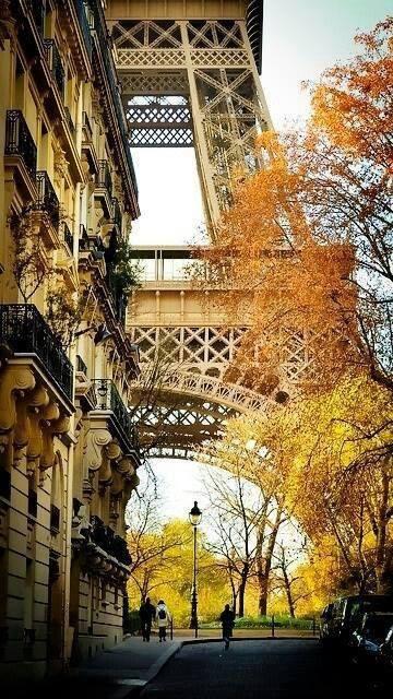Transaction immobiliere Beryl Paris recherche appartement maison